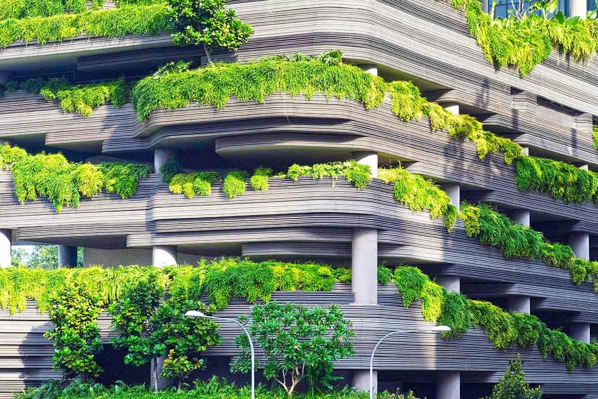 immeuble moderne feuillages balcons la tête dans les arbres